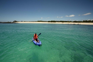 From Santa Cruz: Galapagos, Excursion to Tortuga & Tour
