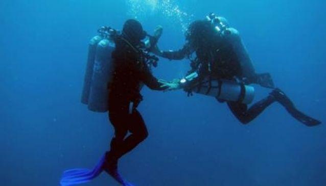 Galapagos Tip Top Dive