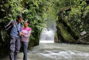 Mindo Cloud Forest Small Group Tour from Quito