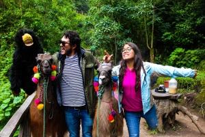 Otavalo and Imbabura Sightseeing Tour from Quito