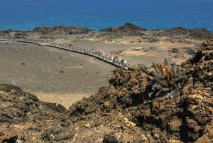 Puerto Ayora: Bartolome Island and Sulivan Bay Day-Trip