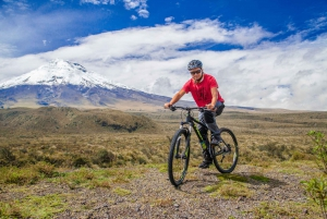 Quito: Bike Tour Around the Cotopaxi Volcano with Lunch