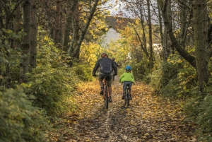 3-Hour Private Cycling Tour