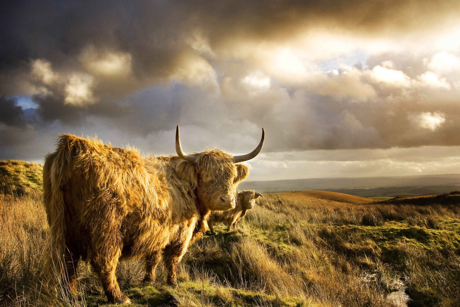 From 3-Day Private Scotland & Isle of Arran Tour