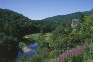 From Edinburgh: 3-Day Private Scotland & Isle of Arran Tour