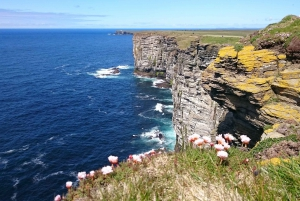 From Edinburgh: Orkney, Skye and the Far North 8 Day Tour