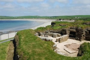 From Orkney and The Far North 5-Day Tour