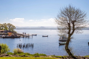 Loch Lomond, Kelpies, and Stirling Castle Small-Group Tour