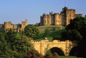 Viking Coast and Alnwick Castle Small Group Day Tour