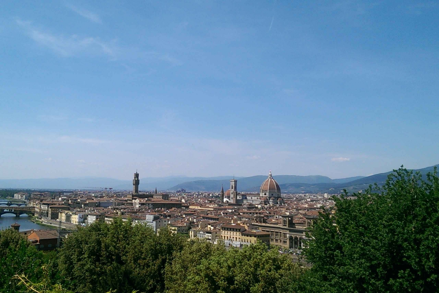 4-Hour Private Tour Including Uffizi & Accademia