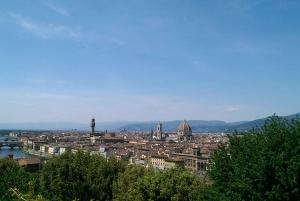 4-Hour Private Tour Including Uffizi & Accademia