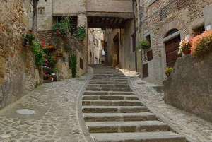 Arezzo and Cortona: Full-Day Tour by Deluxe Van