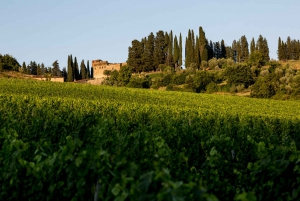 Castello del Trebbio Wine Tasting Near Florence