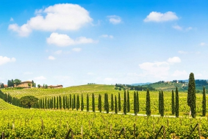 Chianti Colors & Flavors Day Trip from Florence