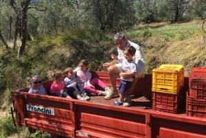 Chianti Natural Wine Tour with Tuscan Lunch