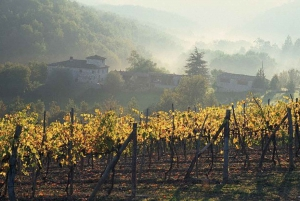 Chianti Wine Tour: Full-Day from Florence with Tastings