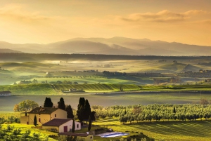 Florence: Chianti Tour with Traditional Tuscan Lunch