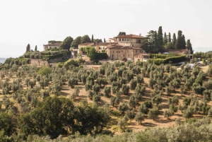 Florence: E-Bike Tour with Piazzale Michelangelo Viewpoint