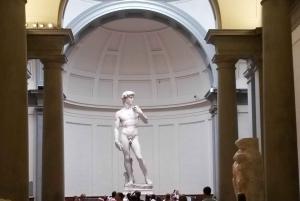 Florence: Historic Center, Accademia & Uffizi Guided Tour