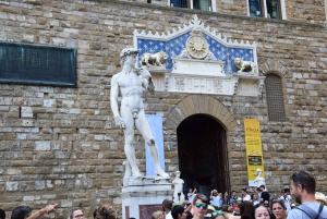 Florence: Tour of Accademia and Uffizi Galleries
