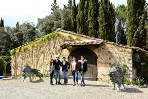 Florence: Winery Tour in Chianti Classico with Dinner