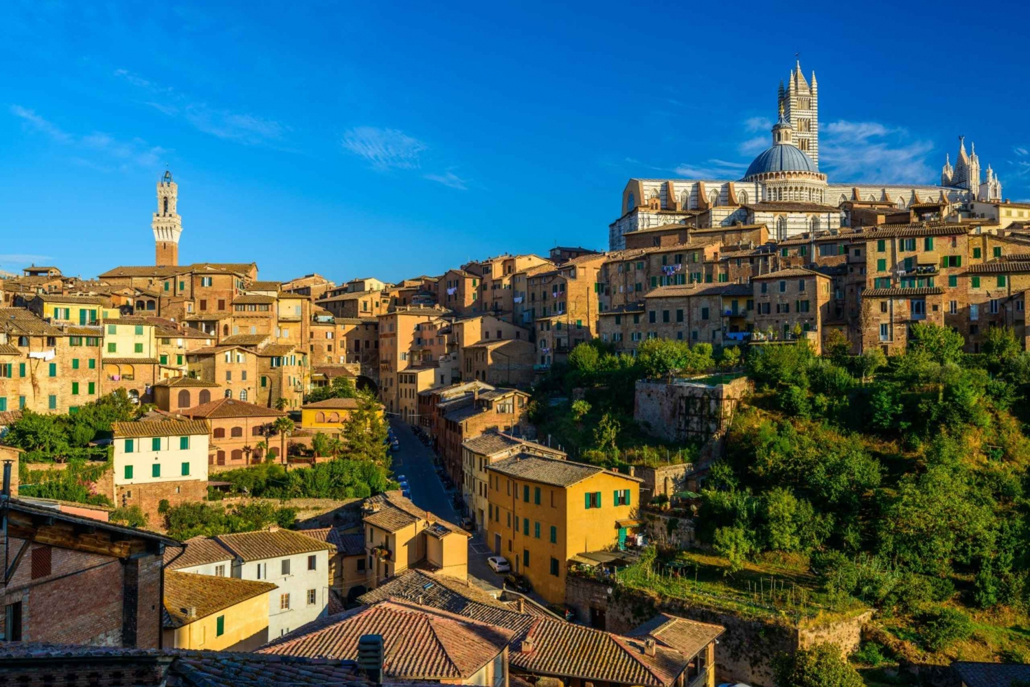 From 2-Hour Private Siena Guided Tour