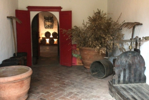 From Carmignano Half-Day Wine and Food Tour