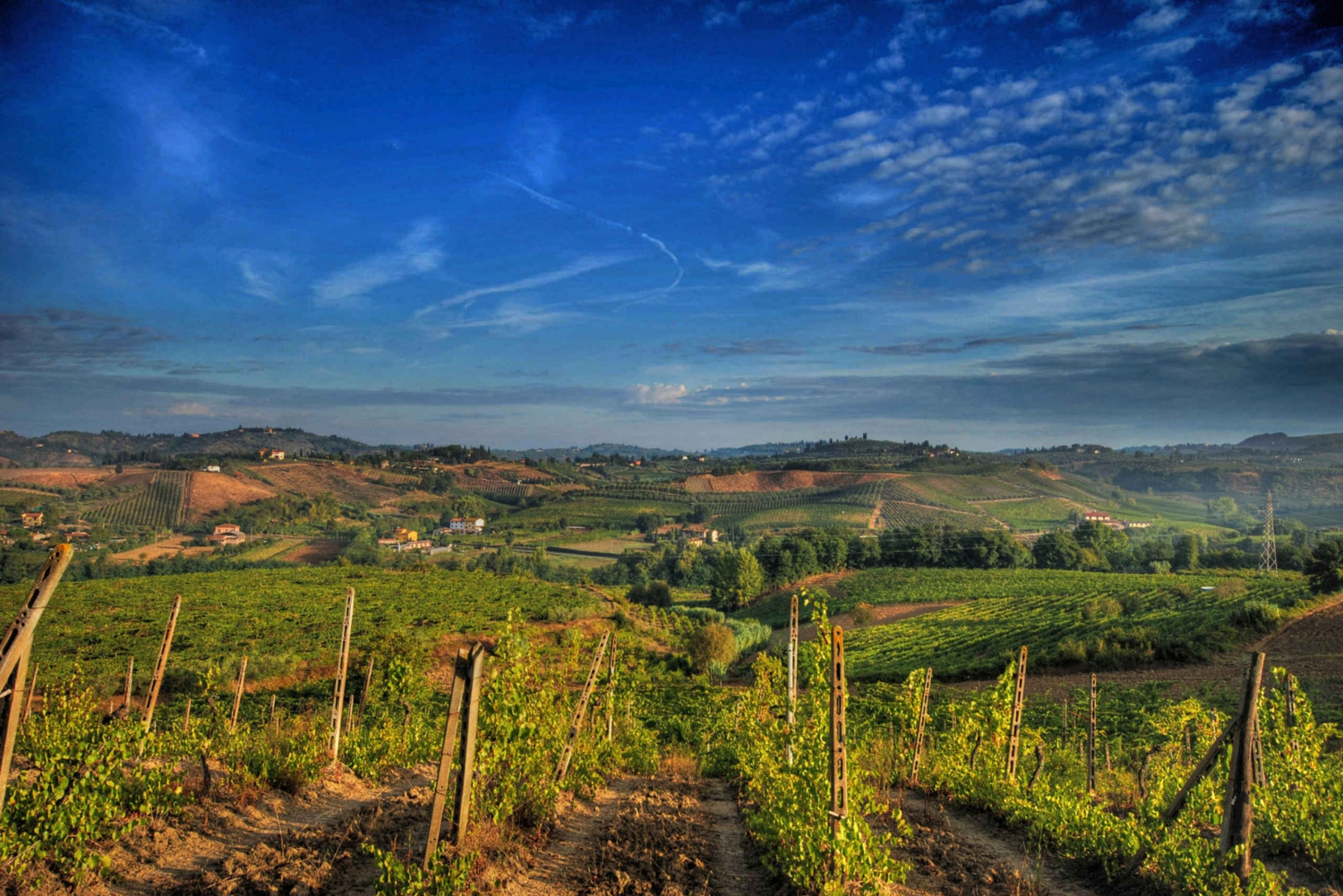 From Chianti Classic Private Tour & Tasting