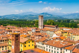 From Florence: 2-Hour Lucca Private Guided Tour