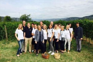 From Florence: Chianti Classic Private Tour & Tasting