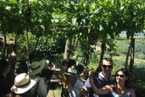From Florence: Chianti Half-Day Afternoon Tour