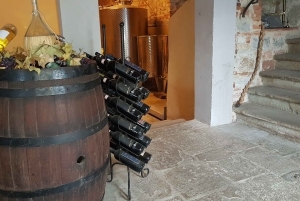 From Florence: Chianti Winery Tour at 3 Estates with Lunch