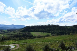 From Florence: Half-Day Wine & Food Tour in Chianti