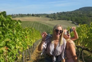 From Florence: Small-Group Half-Day Chianti Wine Tour