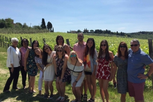 From Florence: Small Group Wine Tasting Tour to Tuscany