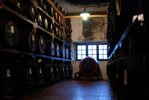 From Full-Day Chianti Wine & San Gimignano