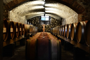 From Half-Day Wine & Food Tour in Chianti