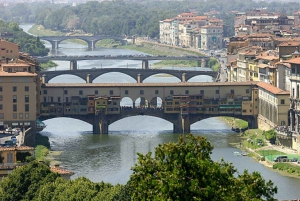 From Livorno: Shore Excursion to Florence & Pisa