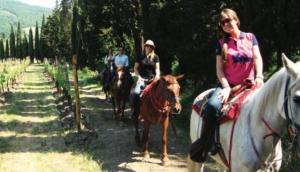 Fun In Tuscany