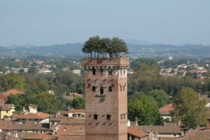 Half-Day Tour to Lucca From Florence
