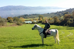 Horseback Ride & Wine Tour in Estate with Lunch