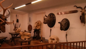La Specola Museum
