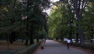 Parco delle Cascine - Cascine Park