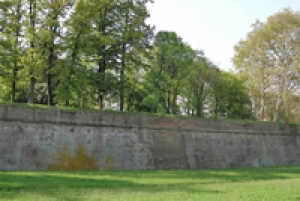 Pisa and Lucca: Private Full-Day Tour by Deluxe Van