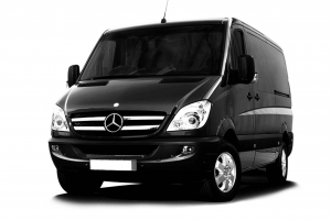 Private Transfer Between Florence Airport and Siena