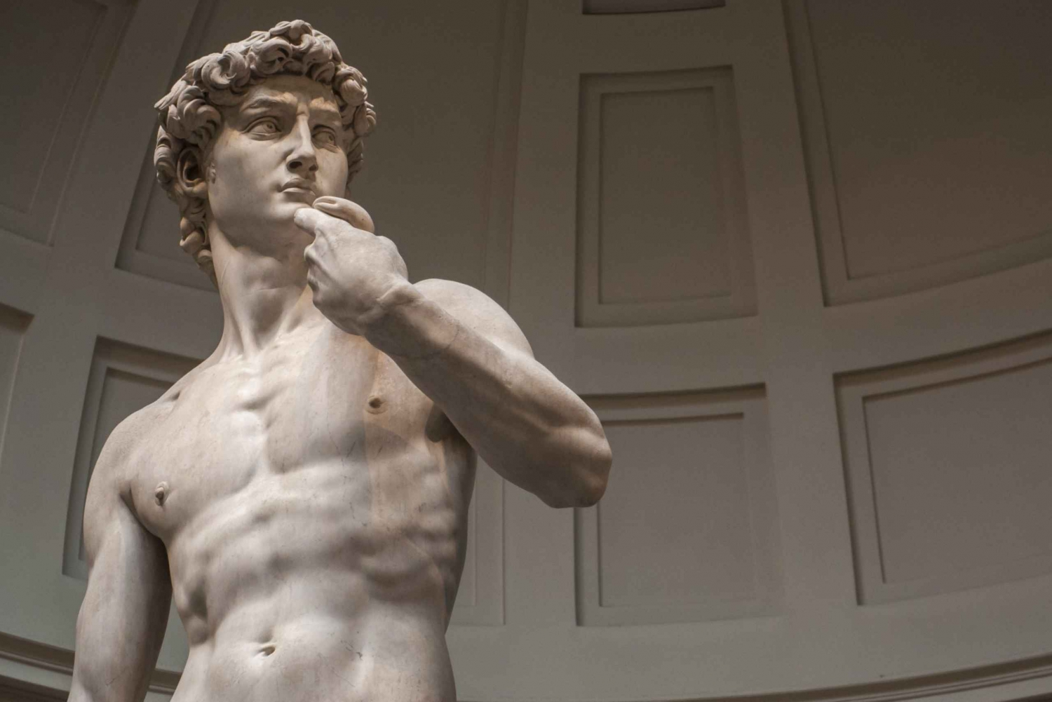 Skip the Line Walking Tour: Michelangelo's David, Florence