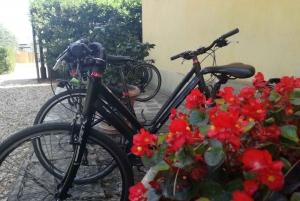 Tuscan Countryside Touring Bike Rental