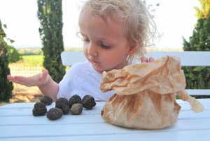 Tuscany: Truffle Hunting and Meal at a Winery