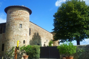 Tuscany Wine Trail: Full-Day Guided Tour