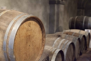 VIP Small-Group SuperTuscan Wine Tour from Florence